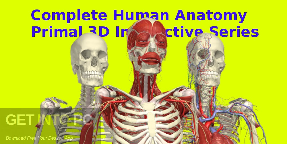 Complete Human Anatomy Primal 3D Interactive Series Free Download-GetintoPC.com