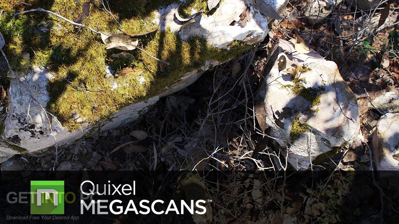 Quixel Megascans Free Download - GetintoPC.com