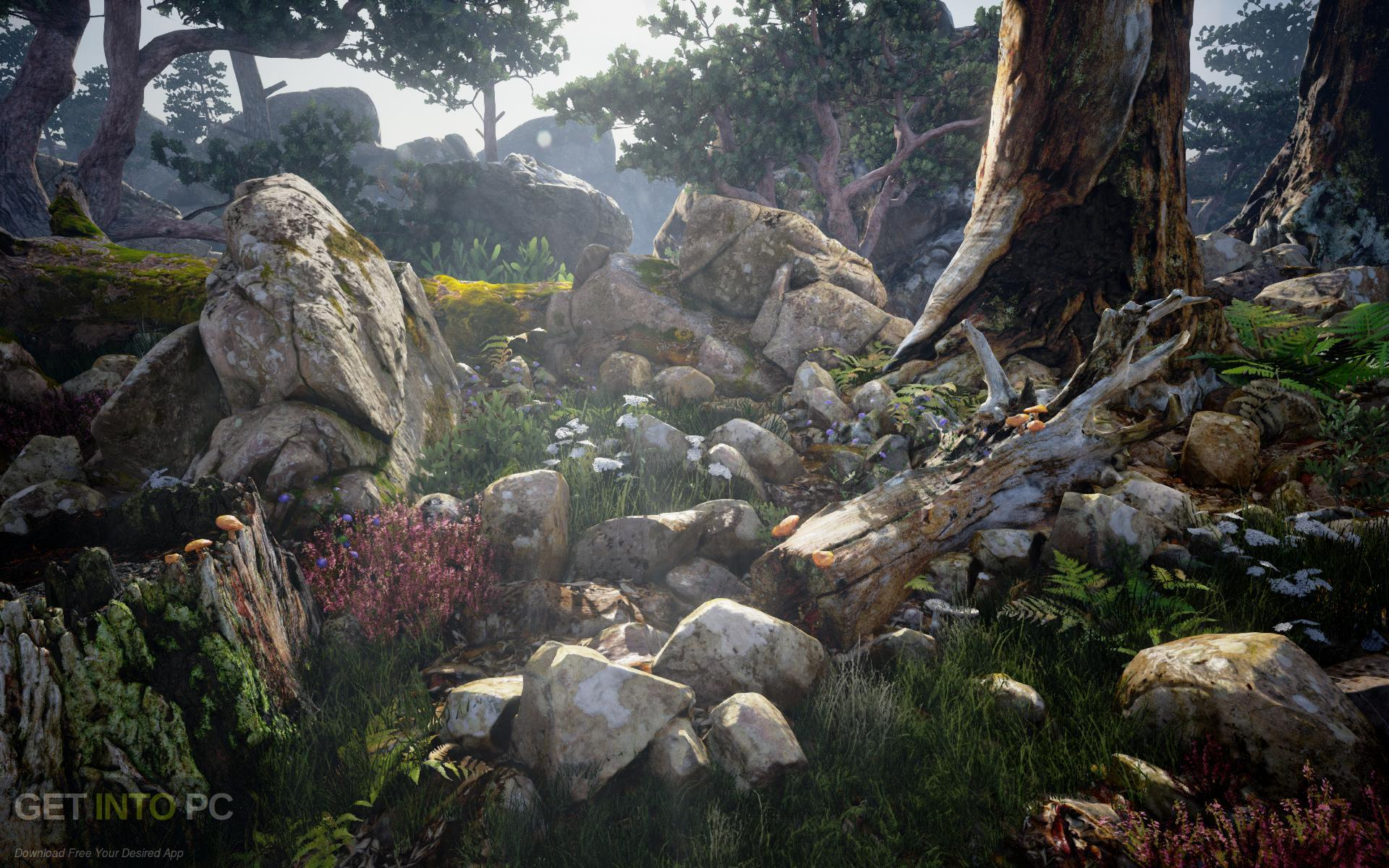 Quixel Megascans Latest Version Download-GetintoPC.com