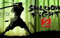 Shadow shadow 2