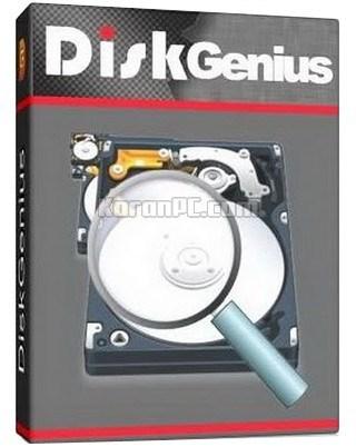 Download DiskGenius Professional in full