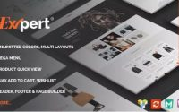 Expert - Clean eCommerce WordPress Theme