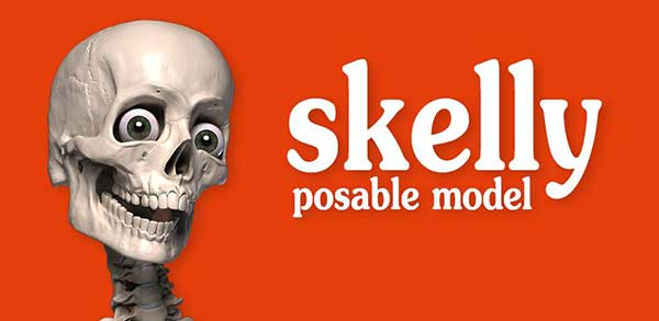 Skelly: Positive Anatomy Model